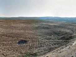 Pământ pustiu, undeva lângă Iași
