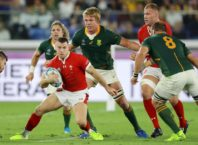 Țara Galilor - Africa de Sud 16-19