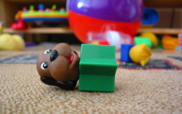 jucarie catel pentru copii